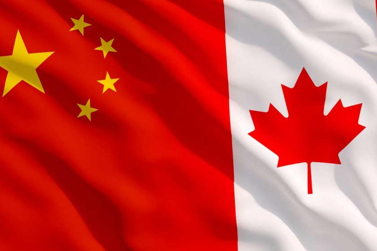 《中国国际移民报告2020》发布:加拿大是主要移民目的地国家