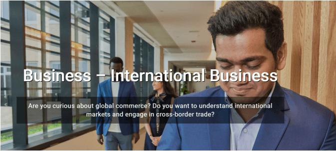 国际商业专业