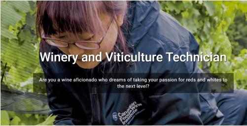 酿酒厂和葡萄栽培技术员